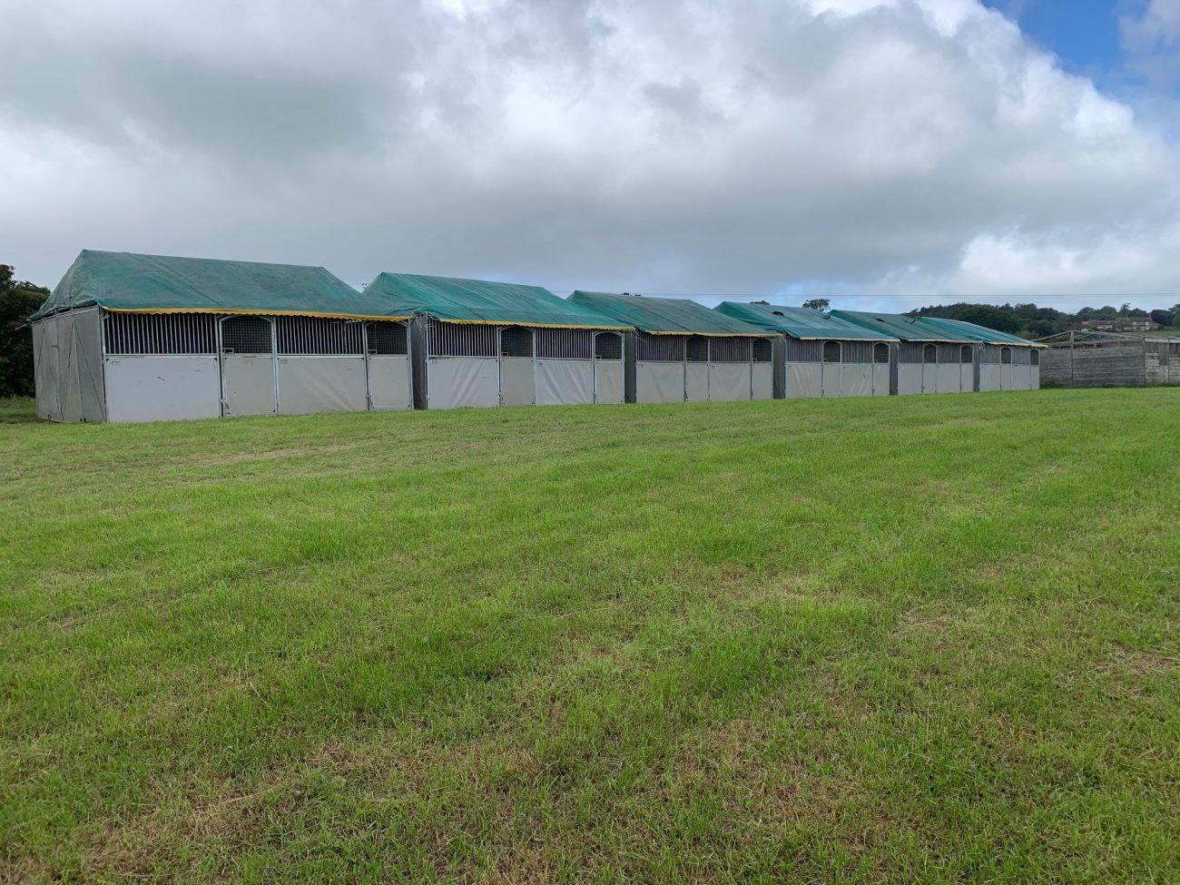 Starbox Temporary horse stables Bolesworth