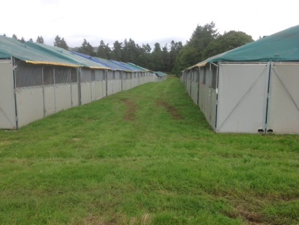 Temporary stables back to back multiple blocks