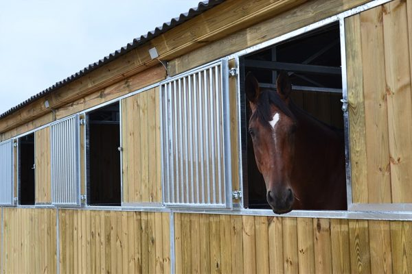 Horse Stable Window