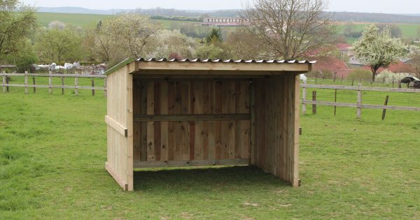 Small timber field shelter viewed from in front